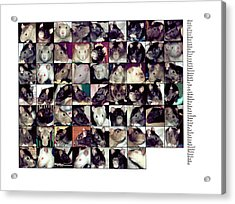 The Rat Retreat Yearbook Acrylic Print