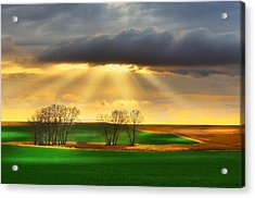 The Ray Of Light Acrylic Print