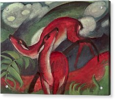 The Red Deer Acrylic Print by Franz Marc