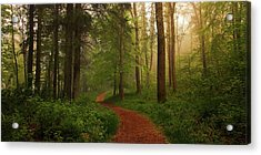The Red Path. Acrylic Print by Leif L?ndal