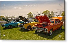 The Rides Acrylic Print by Terry Cosgrave