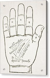 Antique Palmistry Diagram  The Right Hand, Principal Lines Acrylic Print