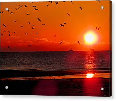The Rise Acrylic Print by Jessica Stiles