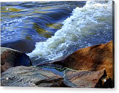 The River Acrylic Print by Debra Crank