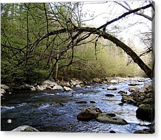 The River Runs Acrylic Print by Kimberly Elliott