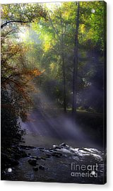 The River's Embrace Acrylic Print by Michael Eingle