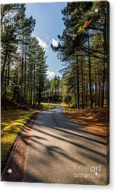 The Road Ahead Acrylic Print by Adrian Evans