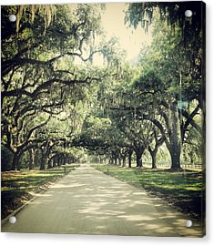 The Road From Boone Hall Acrylic Print