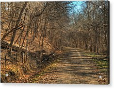 The Road Goes Ever On Acrylic Print by William Fields