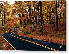 The Road Into Autumn Acrylic Print by Zev Steinhardt