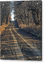 The Road Less Traveled Acrylic Print by Kevin Anderson