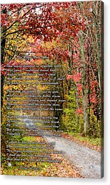 The Road Not Taken Acrylic Print