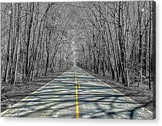 The Road Acrylic Print by Steven  Taylor
