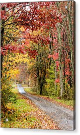 The Road Through Fall Acrylic Print