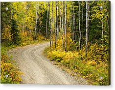 The Road To Bob Bay Acrylic Print by Adam Pender