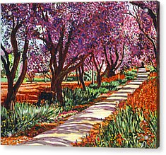 The Road To Giverny Acrylic Print by David Lloyd Glover
