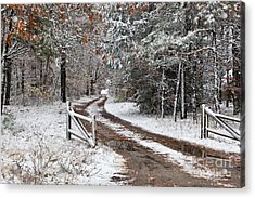 The Road To The River Acrylic Print by Michelle Wiarda