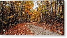 The Road We Take Acrylic Print