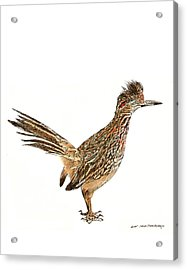 The Roadrunner State Bird Of New Mexico Acrylic Print by Jack Pumphrey