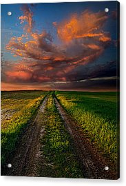 The Roads We Take Acrylic Print by Phil Koch