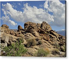 Acrylic Print featuring the photograph The Rock Garden by Michael Pickett