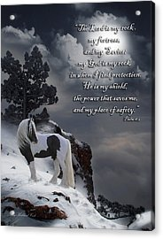 The Rock With Verse Acrylic Print by Terry Kirkland Cook