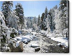 The Rockies In Winter Acrylic Print by Jill Bell