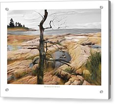 Acrylic Print featuring the painting The Rocks Of The Bay by Bob Salo