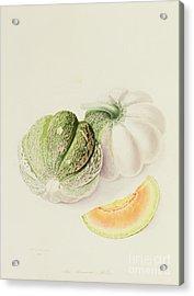 The Romana Melon Acrylic Print by William Hooker