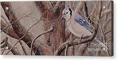 The Roost Sold Acrylic Print