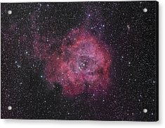 The Rosette Nebula Acrylic Print by Brian Peterson
