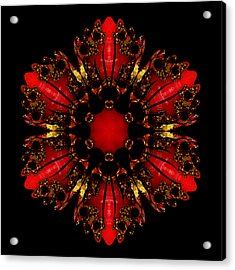 The Ruby Flame Broach Acrylic Print by Owlspook