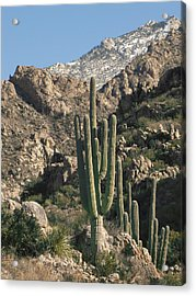 The Rugged Catalina Mountains Acrylic Print