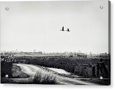 The Rustle Of The Wind Acrylic Print