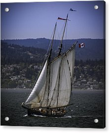 The Schooner Pacific Grace Acrylic Print