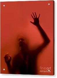 The Scream Acrylic Print by Diane Diederich