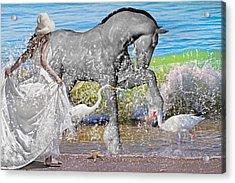 The Sea Horse Acrylic Print