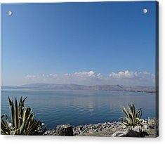 The Sea Of Galilee At Capernaum Acrylic Print by Karen Jane Jones
