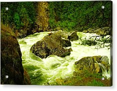 The Selway River Acrylic Print by Jeff Swan