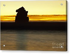 Acrylic Print featuring the photograph The Sentinel by Terry Garvin