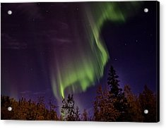The September Aurora Fairbanks Alaska Acrylic Print by Michael Rogers
