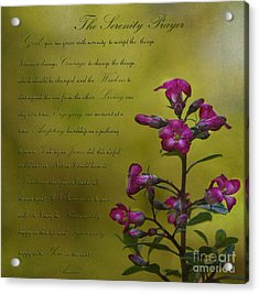 The Serenity Prayer  Acrylic Print
