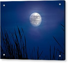 The Seventh Moon Acrylic Print by Mark Andrew Thomas