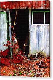 The Shed Out Back In Autumn Acrylic Print by RC deWinter