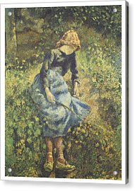 The Shepherdess Acrylic Print by Camille Pissarro