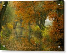 The Shire Acrylic Print