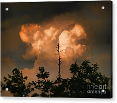 The Sky Above Acrylic Print by B Wayne Mullins