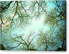 The Sky Acrylic Print by Guido Montanes Castillo