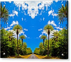 The Sky Has Eyes Acrylic Print by Scott Harms