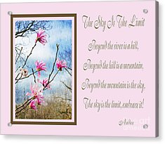 The Sky Is The Limit H 1 Acrylic Print by Andee Design